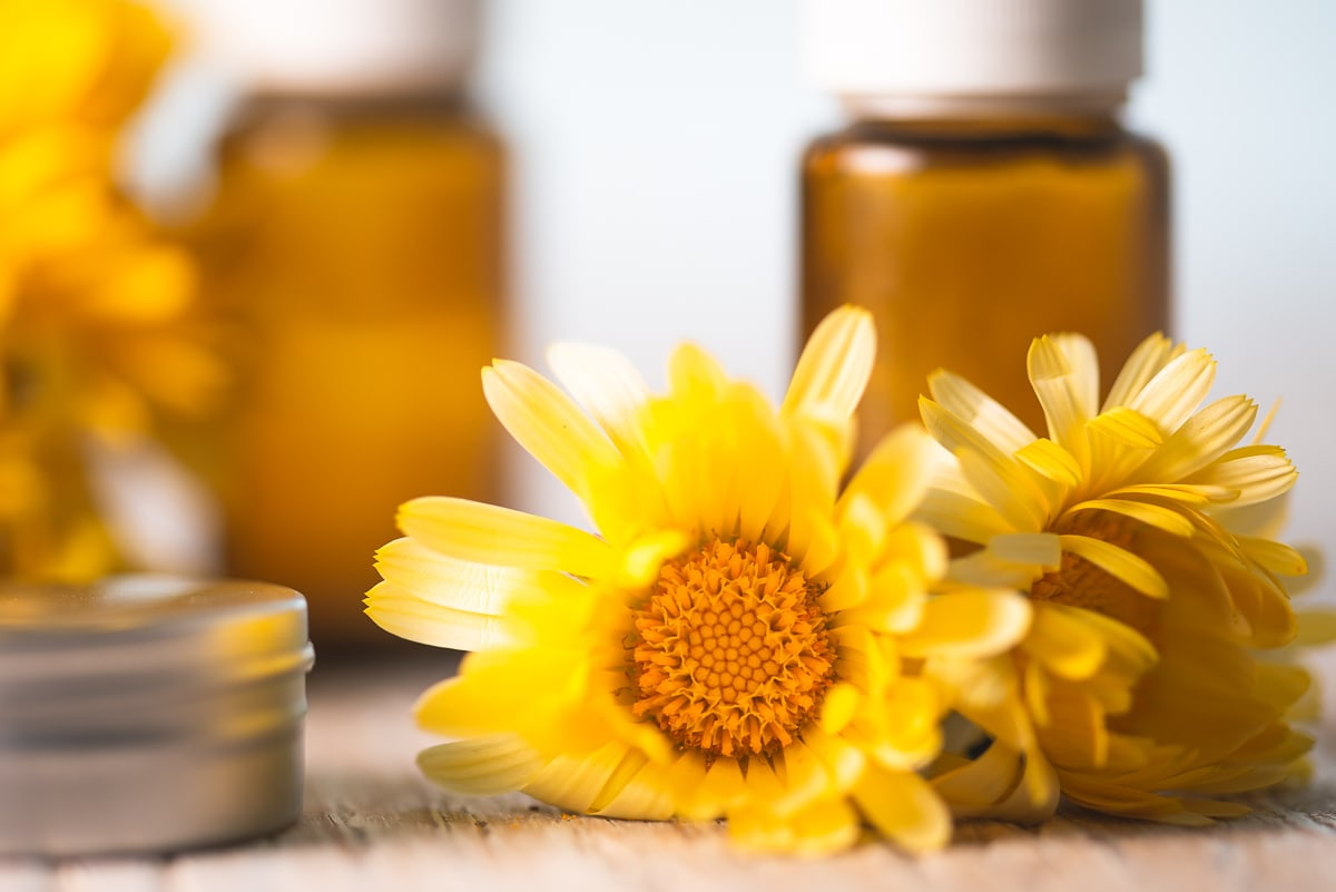 Yellow Calendula flowers sitting in front of essential oil bottles and beside a metal tin.